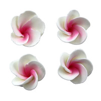 Flower  Frangipani Small 30mm Pink (Bx 32)