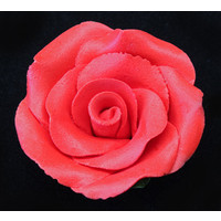 Rose Large 50mm  Red Hangsell (ea)