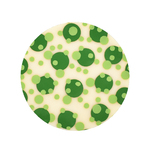 Choc Transfer Sheet  Lime Dots (Ea)