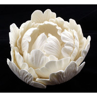 Peony Elegance Rose White 100mm (Box 9)