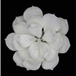 White Magnolia Large 110mm (1)