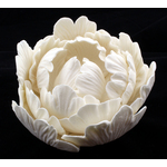 Peony White Closed No Stamen 90mm (Box 6)