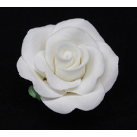 Rose Large 50mm White With Calyx Hangsell (ea)