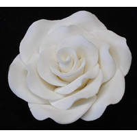 Rose  Korean XL 7cm (Bx 16)