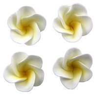 Frangipani Small 30mm Lemon Hangsell (6pk)